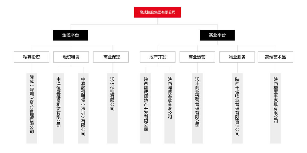 汇高OA系统陕西区为隆成控股集团公司进行管理升级!